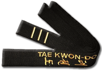 Spirit of Taekwon-Do